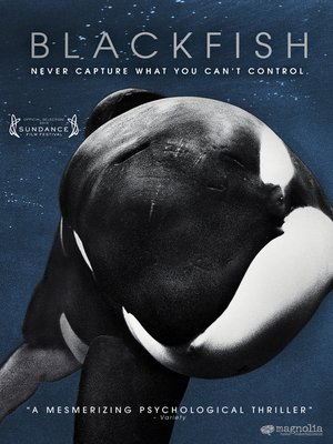Blackfish by Gabriela Cowperthwaite. AVAILABLE Video.